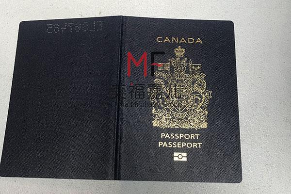 新政策:在加拿大生孩子国籍怎么算?是哪国公民?