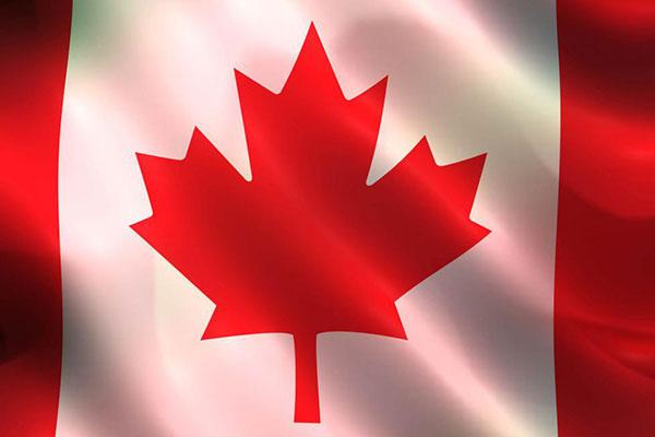 中国人在加拿大生孩子现在还合法吗?