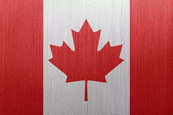 加拿大生孩子国籍是什么?相关政策解读