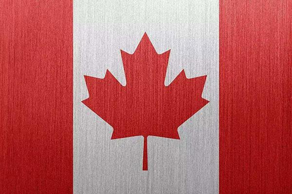 加拿大生孩子有什么福利?赴加生子的好处有这些!