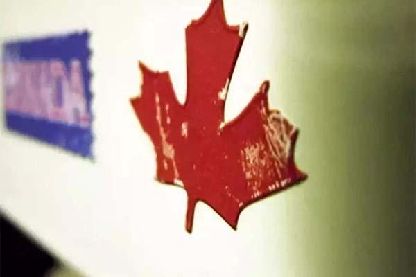 中国人在加拿大生孩子政策:赴加生子有什么变动?